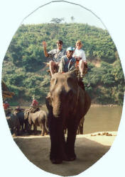 Riding Elephants in Nepal